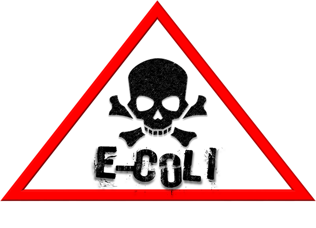 E coli hazard image parjade x de pixabay
